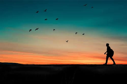 a person walks at sunset as birds fly in the sky