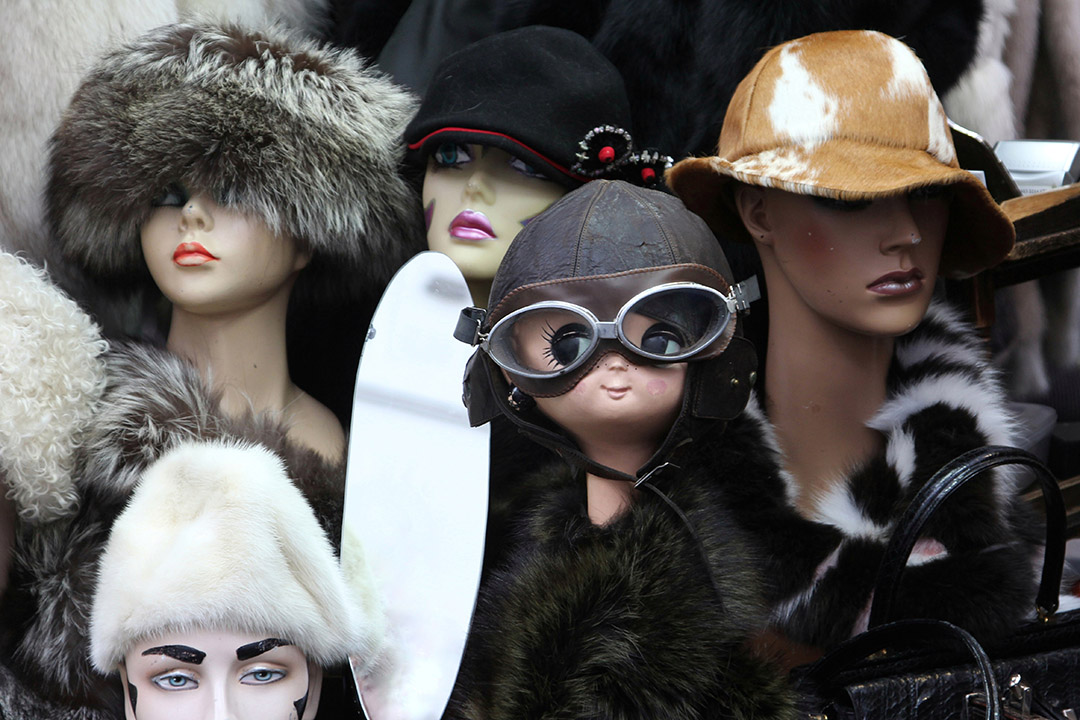 An assortment of mannequins sport varied hats
